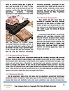 0000080780 Word Template - Page 4