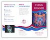 0000080785 Brochure Templates