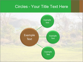 0000080786 PowerPoint Templates - Slide 79