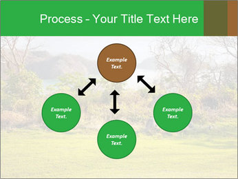 0000080786 PowerPoint Template - Slide 91