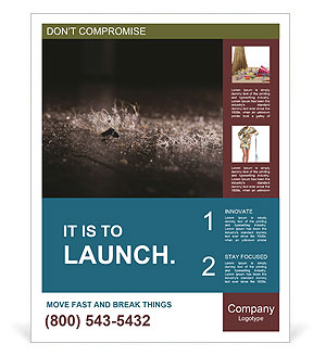 0000080788 Poster Template