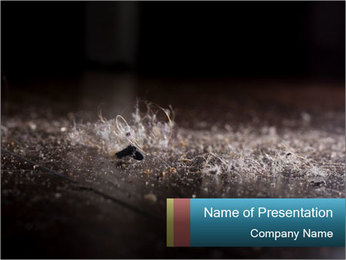 0000080788 PowerPoint Template
