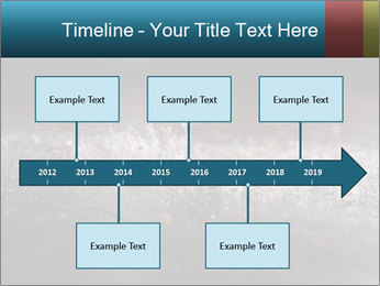 0000080788 PowerPoint Template - Slide 28