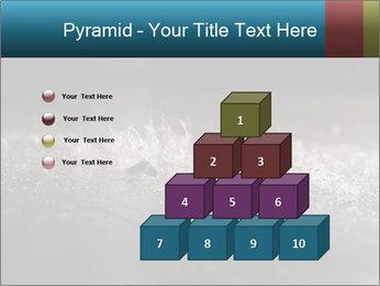 0000080788 PowerPoint Templates - Slide 31