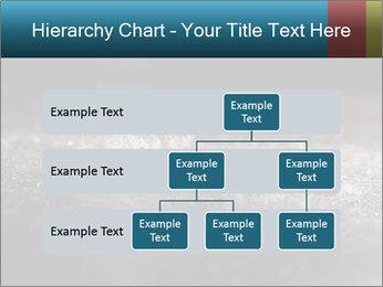 0000080788 PowerPoint Templates - Slide 67