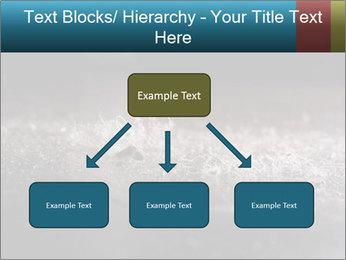 0000080788 PowerPoint Templates - Slide 69
