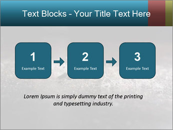 0000080788 PowerPoint Template - Slide 71