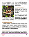 0000080796 Word Templates - Page 4