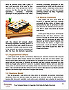 0000080797 Word Template - Page 4