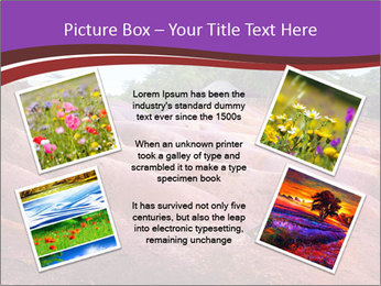 0000080819 PowerPoint Template - Slide 24