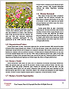 0000080819 Word Templates - Page 4