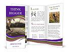 0000080821 Brochure Templates