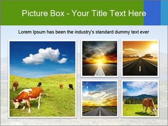 0000080838 PowerPoint Template - Slide 19