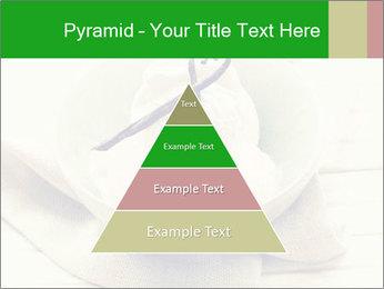 0000080840 PowerPoint Templates - Slide 30