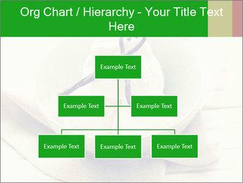 0000080840 PowerPoint Templates - Slide 66