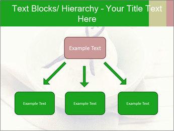 0000080840 PowerPoint Templates - Slide 69