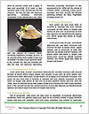 0000080840 Word Template - Page 4