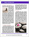0000080846 Word Templates - Page 3