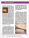 0000080849 Word Templates - Page 3