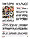 0000080852 Word Template - Page 4
