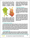 0000080857 Word Template - Page 4