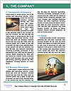 0000080860 Word Template - Page 3