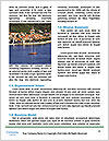 0000080861 Word Template - Page 4