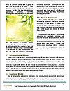 0000080863 Word Template - Page 4