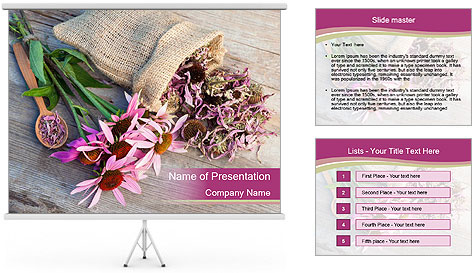0000080864 PowerPoint Template