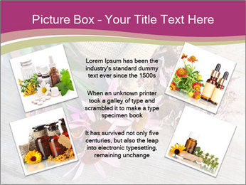0000080864 PowerPoint Template - Slide 24
