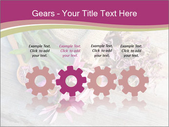 0000080864 PowerPoint Template - Slide 48