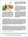 0000080864 Word Templates - Page 4