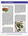 0000080873 Word Template - Page 3