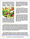 0000080873 Word Template - Page 4