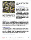 0000080874 Word Template - Page 4
