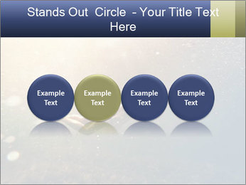 0000080875 PowerPoint Templates - Slide 76