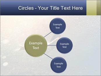 0000080875 PowerPoint Templates - Slide 79