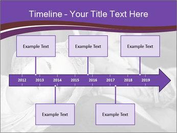 0000080879 PowerPoint Template - Slide 28