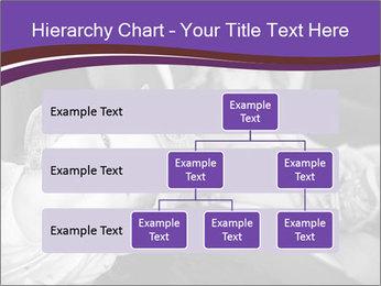 0000080879 PowerPoint Template - Slide 67