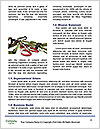 0000080882 Word Templates - Page 4