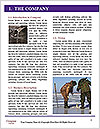 0000080883 Word Template - Page 3