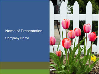 0000080891 PowerPoint Template - Slide 1