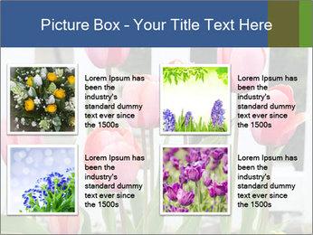 0000080891 PowerPoint Template - Slide 14