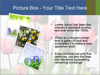 0000080891 PowerPoint Template - Slide 17