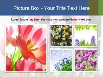 0000080891 PowerPoint Template - Slide 19
