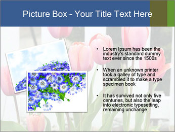 0000080891 PowerPoint Template - Slide 20