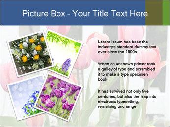 0000080891 PowerPoint Template - Slide 23