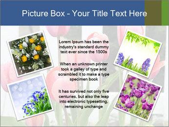 0000080891 PowerPoint Template - Slide 24