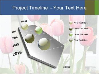 0000080891 PowerPoint Template - Slide 26