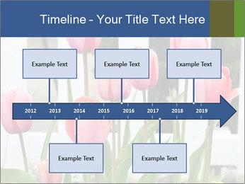 0000080891 PowerPoint Template - Slide 28
